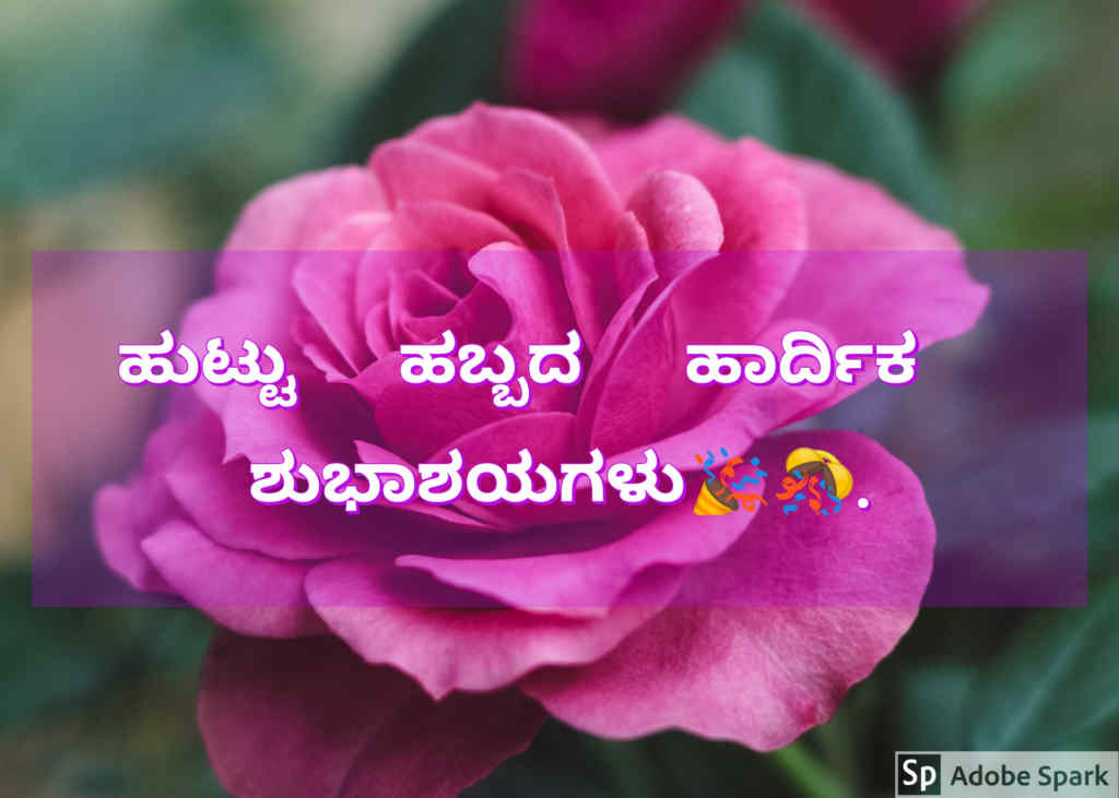 11. Happy Birthday Wishes In Kannada