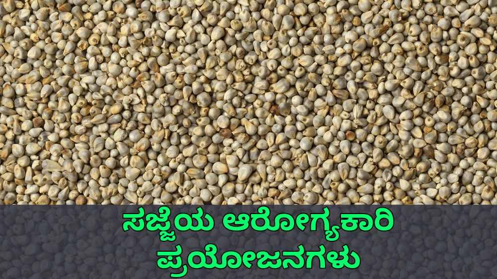 ಸಜ್ಜೆಯ ಪ್ರಯೋಜನಗಳು - Pearl Millet Benefits in Kannada